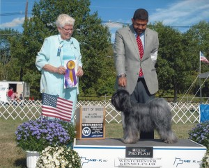 Winning the Breed and her Championship in NJ